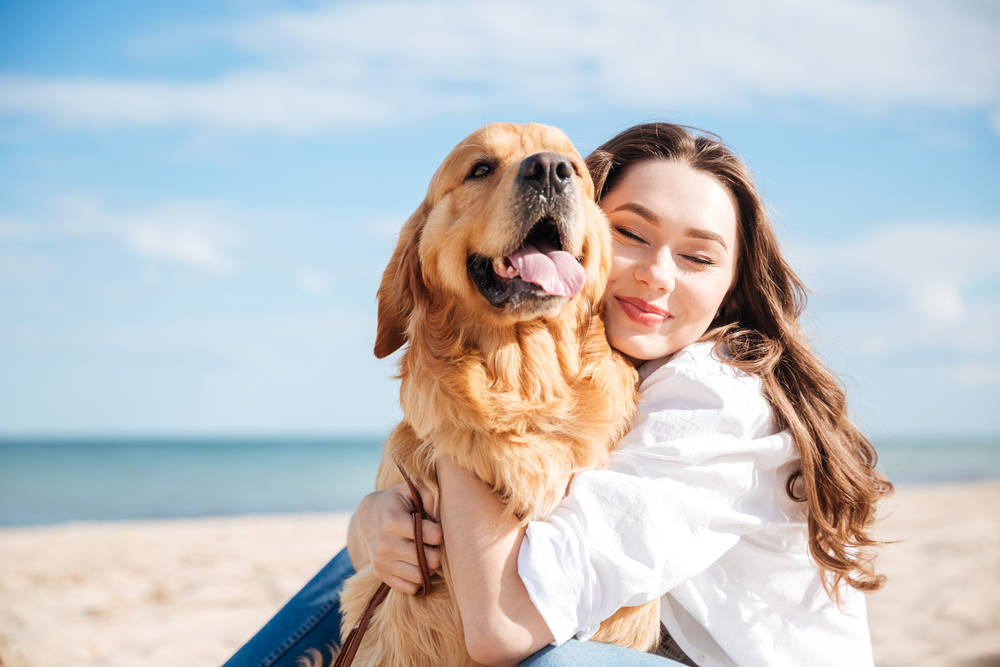 Empresas especializadas en mascotas