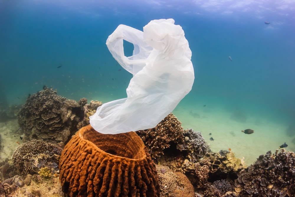Por tu salud y por la del planeta, exige bolsas biodegradables