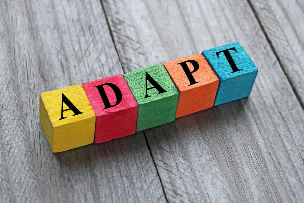 Adaptarse es sinónimo de éxito