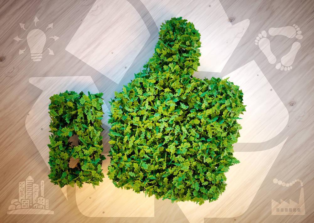 Profesionales, serviciales y sostenibles, así son las empresas más respetadas hoy