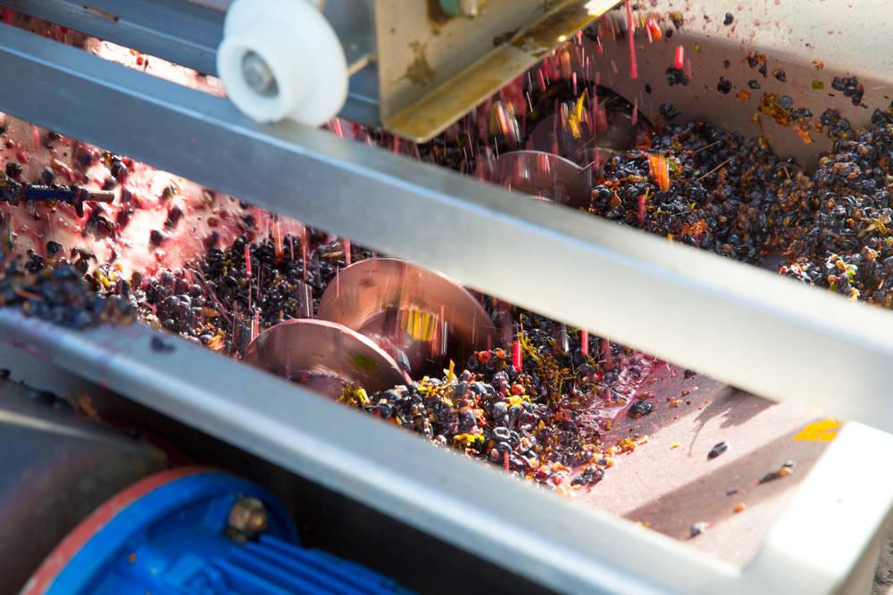 La maquinaria vinícola apuesta por la innovación